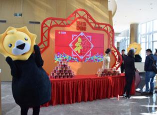 苏宁易购2018年货节发布会现场高清
